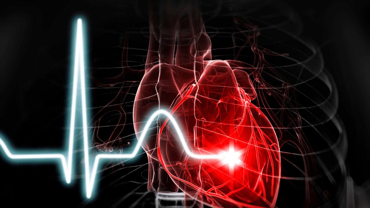 Fitbit hartslag meten