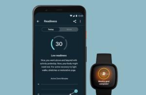 Dagelijkse Gereedheidsscore Daily Readiness Fitbit